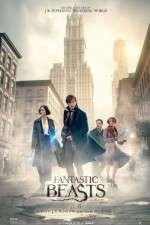 Watch Fantastic Beasts and Where to Find Them Online 123movieshub